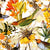 Colorful Birds and Redouté Flowers – White by Robin Sprong at SARZA. Botanical, Floral, Robin Sprong, Uta Naumann, Wallpaper, Wildlife