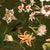 Hummingbirds and Tropical Flowers – Green by Robin Sprong at SARZA. Botanical, Floral, Robin Sprong, Uta Naumann, Wallpaper, Wildlife