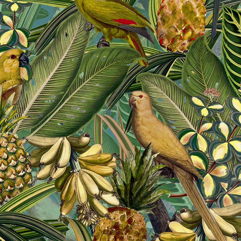 Colorful Birds in Jungle with Bananas – Dark Teal and Green