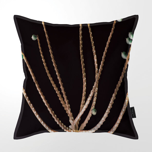 PALM SEED ON BLACK THROW PILLOW