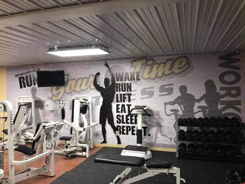 Fitness Gym Wall Mural