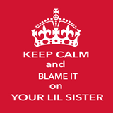 Keep Calm And Blame It On Your Little/Big Sister Tees