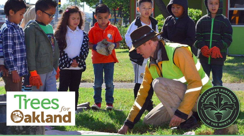 November Nonprofit of the Month: Trees for Oakland
