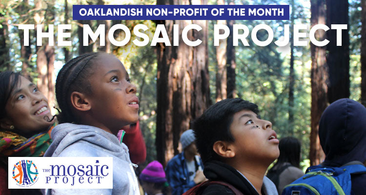 January Nonprofit of the Month: The Mosaic Project