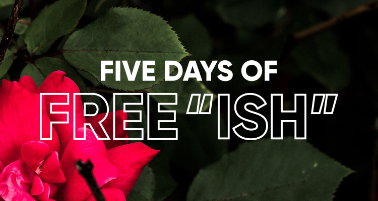 5 Days of free ISH: Fall Launch