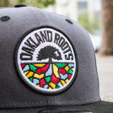 Cap - Roots SC Logo, 9Fifty Adjustable Snapback, Graphite