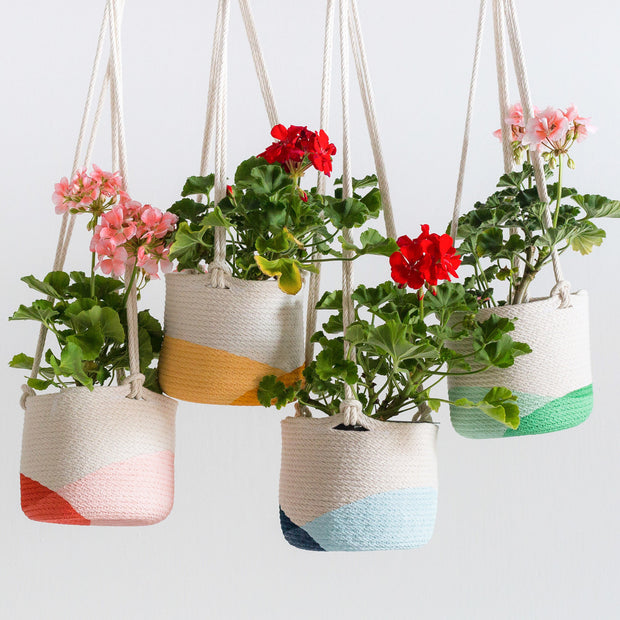 "Closed Mondays 6"" Hanging Planter (Mint/Green)"