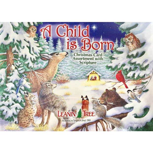 Leanin' Tree A Child Is Born 20 Christmas Cards Assortment