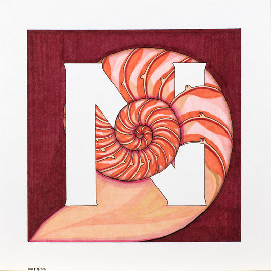 N is for Nautilus