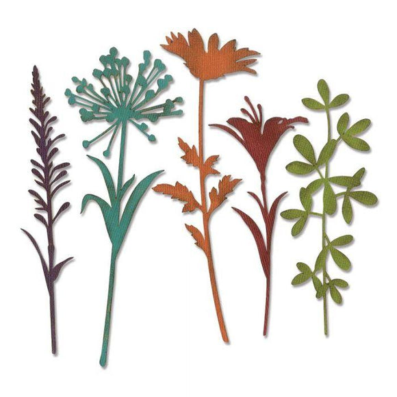 Sizzix Thinlits Die Set 5PK - Wildflower Stems #2 Item: 664164