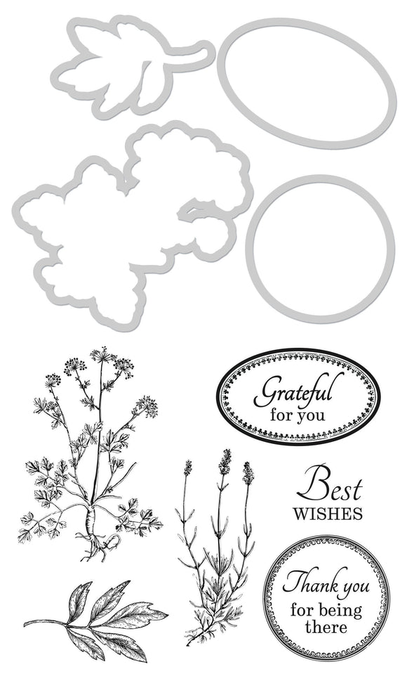 DD980 - Kaisercraft : Decorative Die & Stamp Grateful