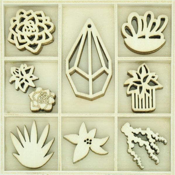 FL645 - Flourish Pack Succulents 45pcs