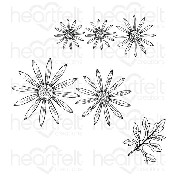 HCPC-3887 - Wild Aster Cling Stamp Set
