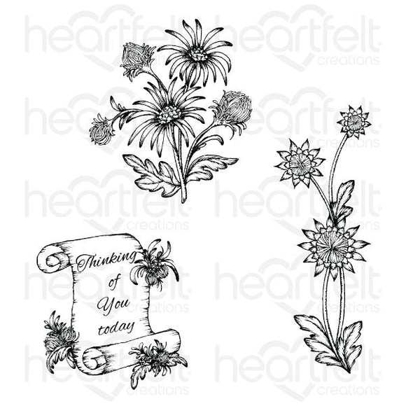 HCPC-3889 - Wild Aster Scroll & Cluster Cling Stamp Set