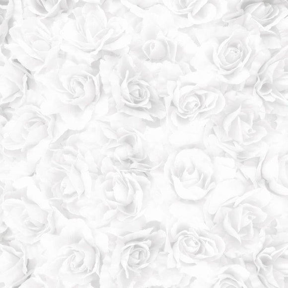 P2727 - Two Souls 12x12 Scrapbook Paper - White Rose