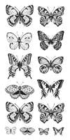 ST915 : Clear Stickers Butterflies
