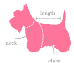 butterfly dog dress measurements