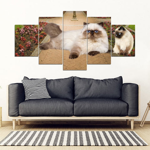 Himalayan Cat Print-5 Piece Framed Canvas- Free Shipping-Paww-Printz-Merchandise