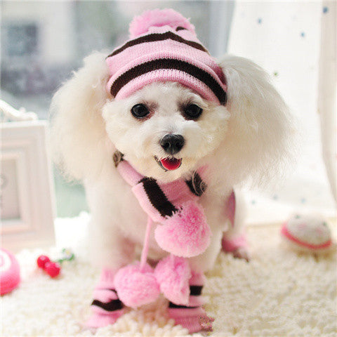 Pink 1 / XXS Pink Dog Hat & Scarf Set