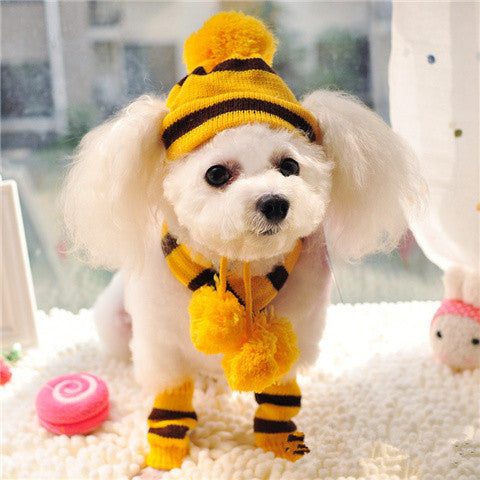Yellow / XXS Yellow Dog Hat & Scarf Set