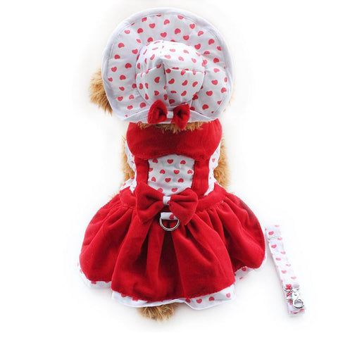 Red / XS Red Love Hearts Dog Dress with Hat Panties & FREE Leash