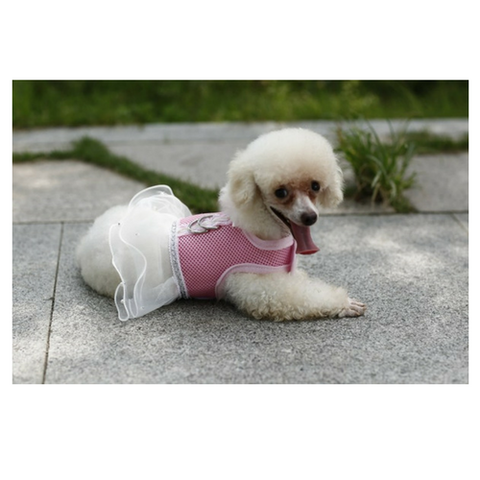 Harness Dog Dress