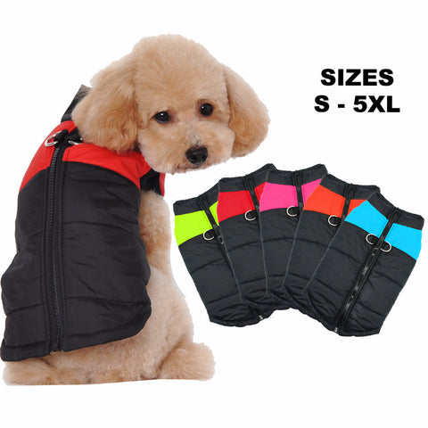 Breathable Waterproof Dog Jacket