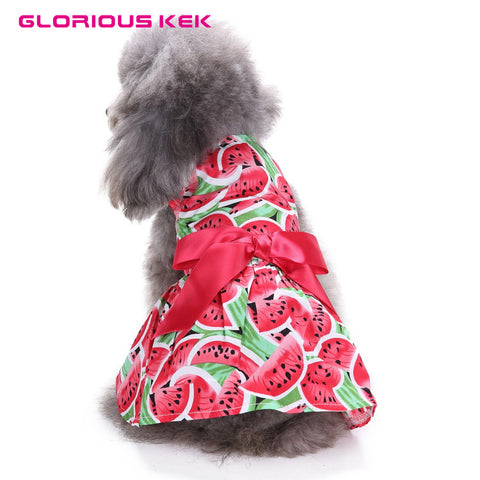 Watermelon dress with satin bow