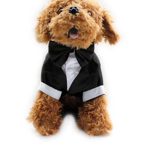 Dog dress suit