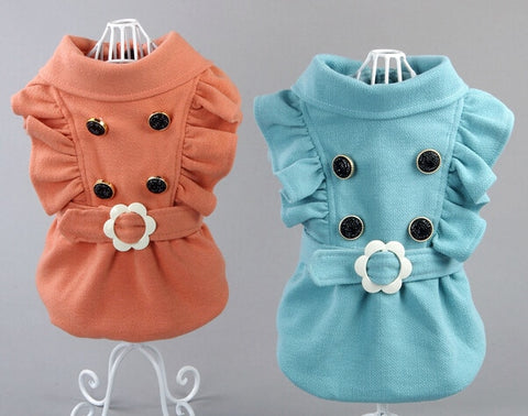 Princess doggy jacket.