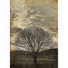 Sepia Tree Decoupage Papers