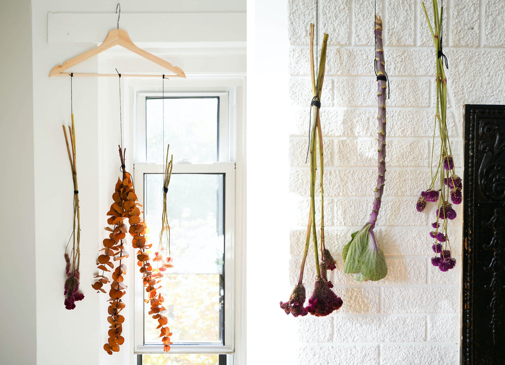 Hang your bundle of fresh flower to allow it to dry for 2 weeks.