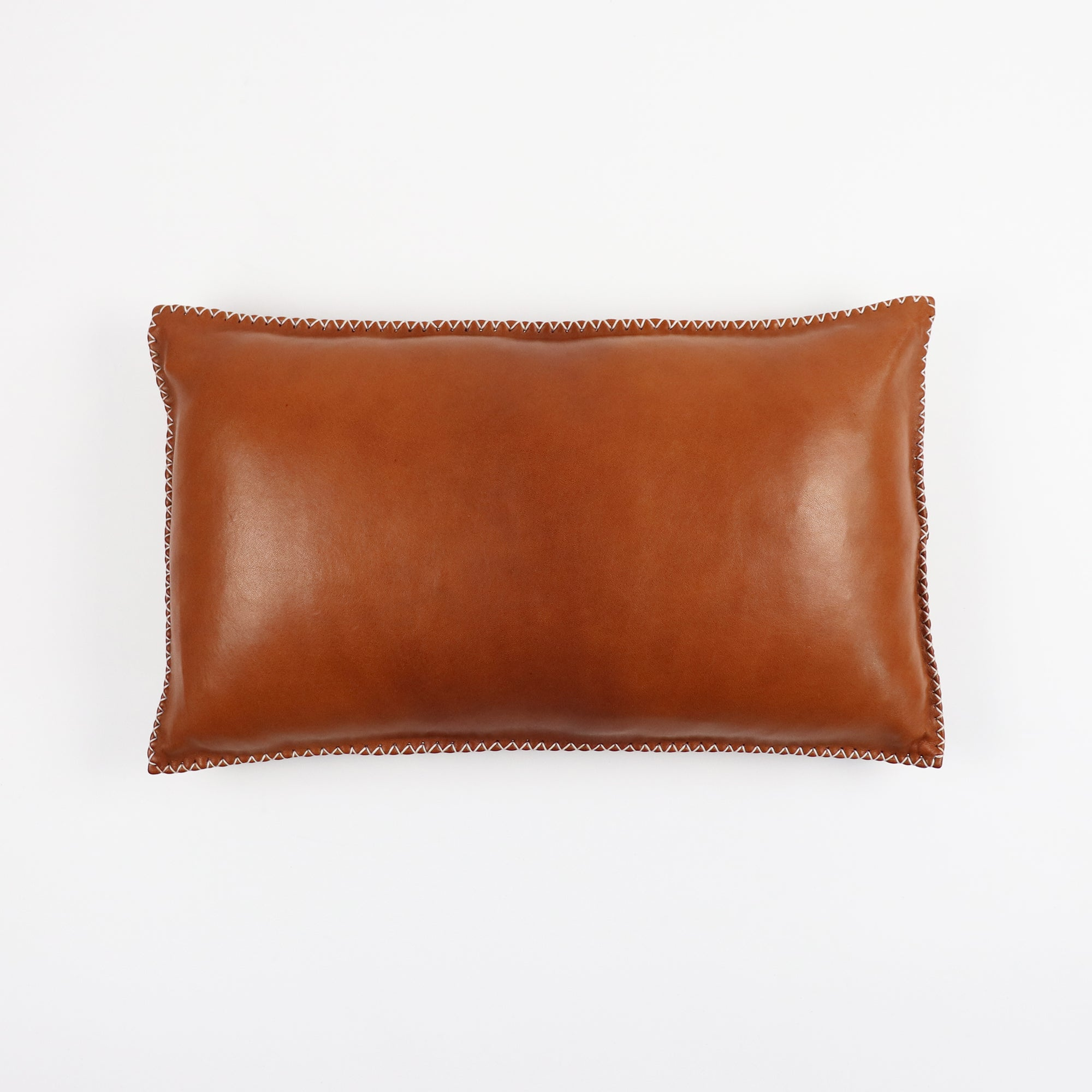 Tan leather pillow with cactus fibre stitching in rectangle shape on top of a white background