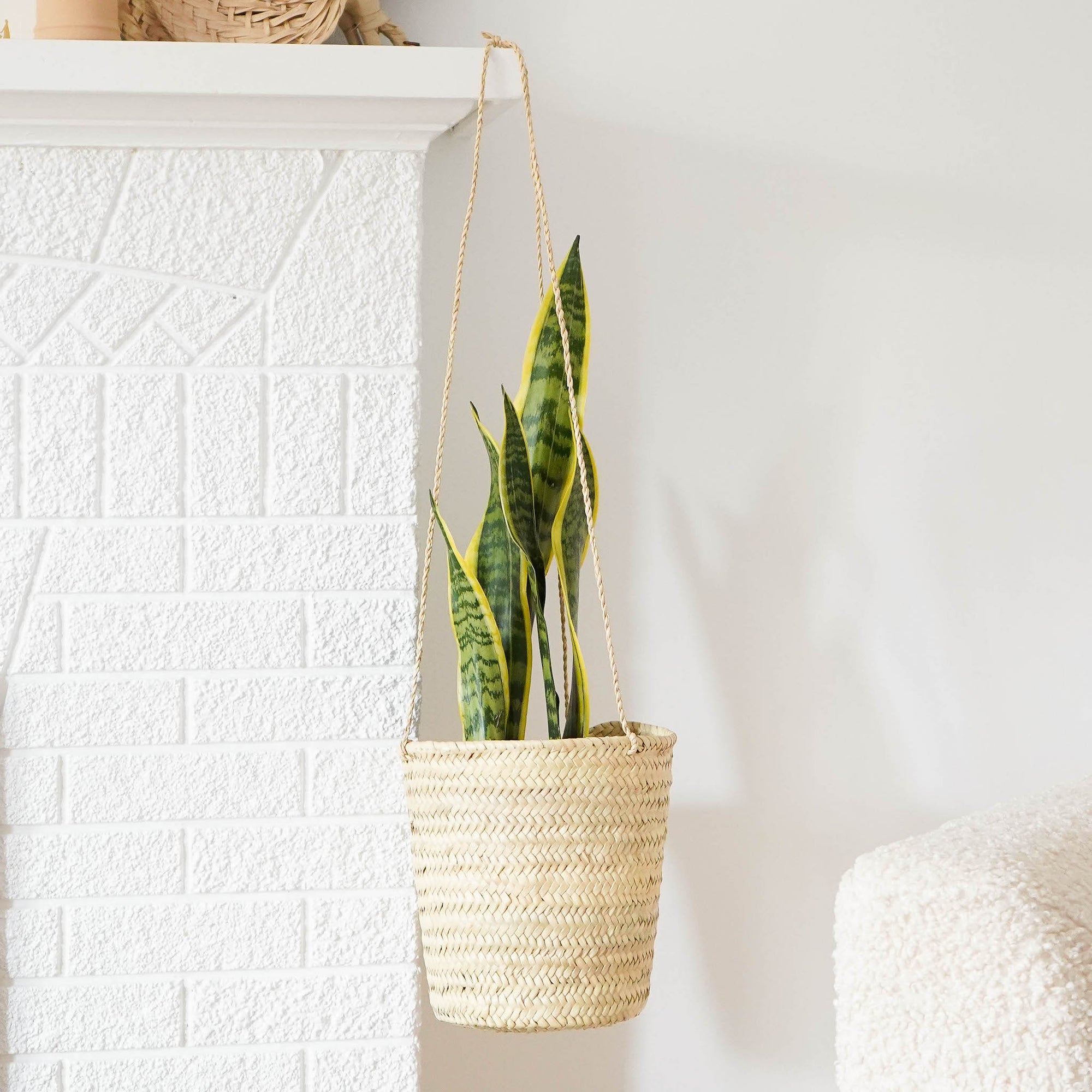 Straw planter holding a snake plant