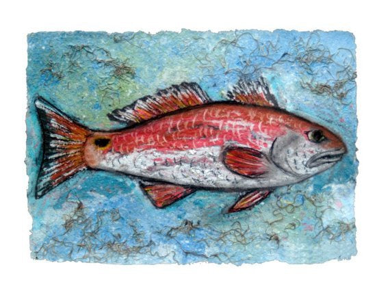Louisiana Redfish Print
