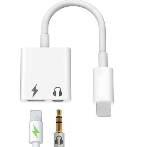 Audio + Charging 2 In 1 Cable