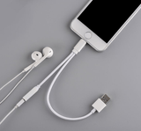 Dual Earphone & Charging Cable (USB)