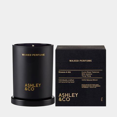 ashley and co waxed perfume candle blossom gilt fr