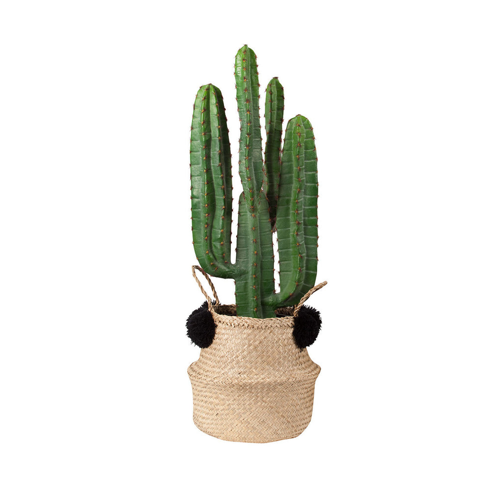 Pom Pom Seagrass Belly Basket Black natural woven basket cactus
