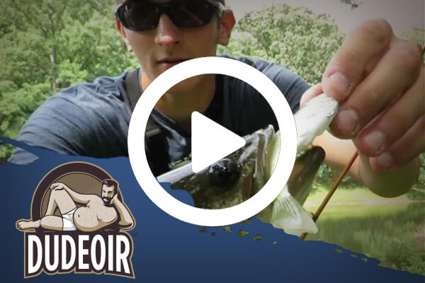 How to Fish a Frog for Summertime Bass