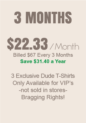 Dude T-shirt of the month - 3 Months