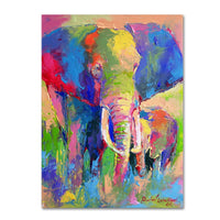 animal oil painting on canvas african cool Elephant artwork for home decor Handmade modern art High quality - On Trends Avenue