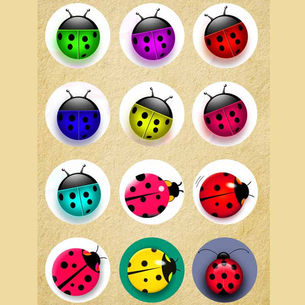 12pcs/lot ladybug mix round glass cabochons DIY jewelry findings fit 18mm snap button bracelet women