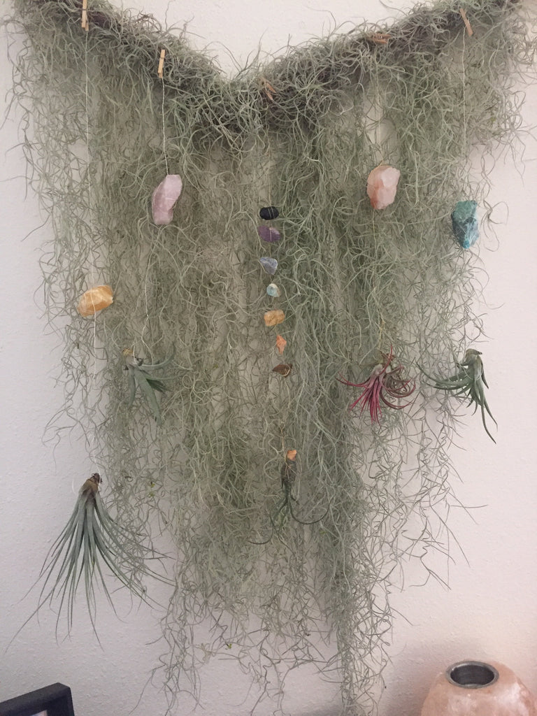 Rose Quartz Air plant Hangers