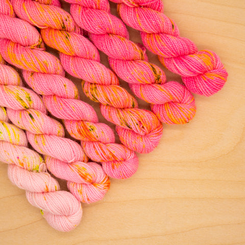 Lovely Lobster Speckled Fade Mini Skein Set