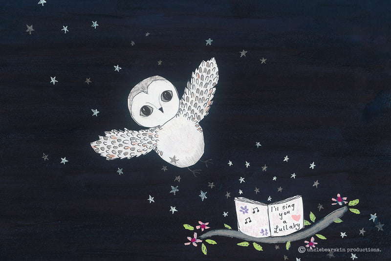 Storybook - 'The Owl Outside My Door'