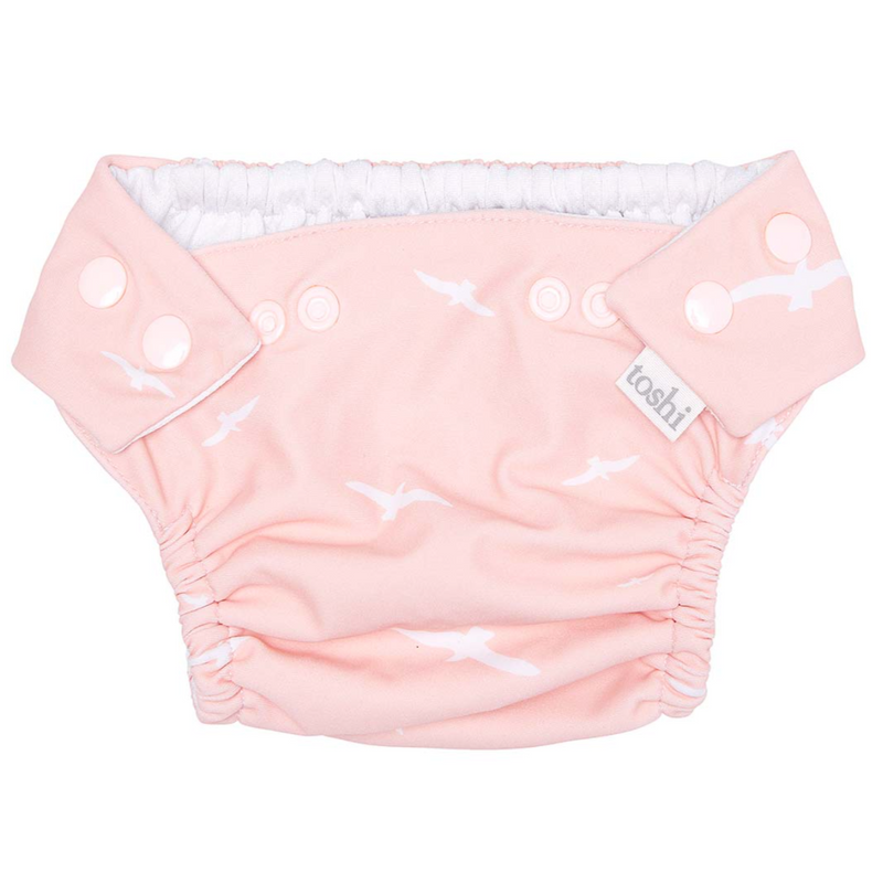 toshi_swim_baby_nappy_pant_palm_beach_front