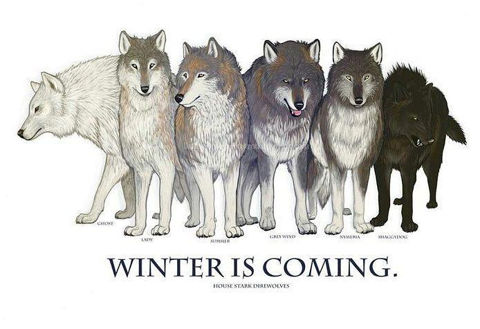 Pets of the Stark Family