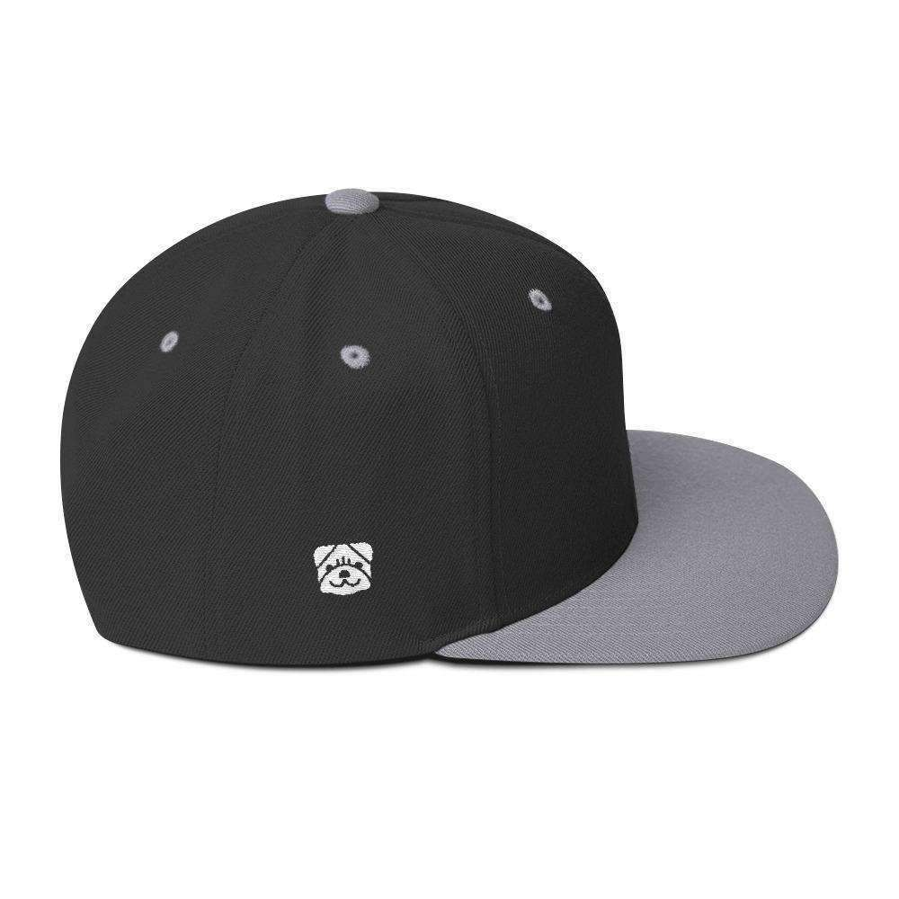 iPLAY FETCH! Wool Blend Snapback Hat - iplayfetch.com