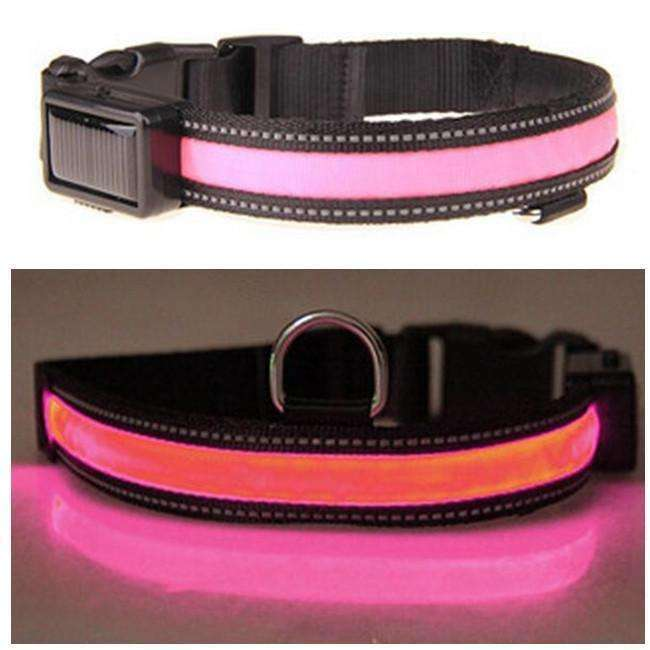 Solar Powered LED USB Glow Collar Collars - iplayfetch.com